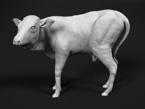 Ankole-Watusi 1:48 Calf in Smooth Fine Detail Plastic