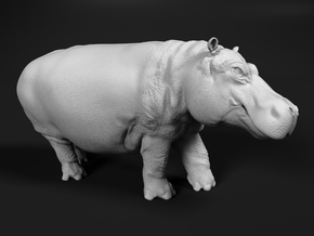 Hippopotamus 1:25 Walking Male in White Natural Versatile Plastic