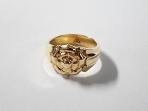 Tyrell Ring in Polished Brass: 10 / 61.5