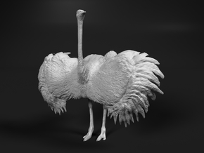 Ostrich 1:48 Wings Spread in Smooth Fine Detail Plastic