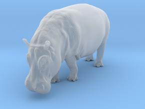 Hippopotamus 1:22 Walking Female in Smooth Fine Detail Plastic