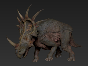 Styracosaurus (Medium / Large size) in White Natural Versatile Plastic: Medium