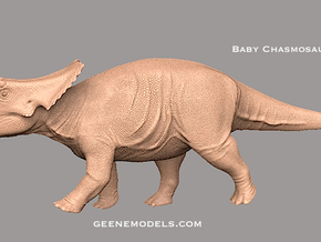 Dinosaur Baby Chasmosaurus in White Strong & Flexible