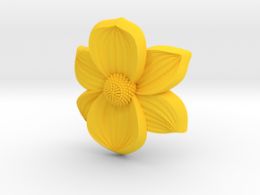 Pacific Dogwood Elastic Band in Yellow Strong & Flexible Polished