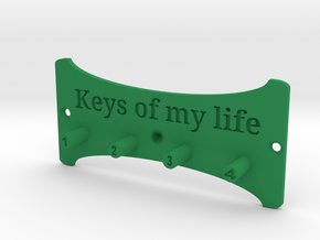 Keys Of My Life Key Holder in Green Processed Versatile Plastic