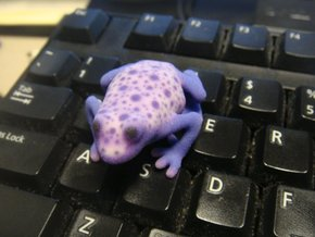 White Poison Dart Frog in Full Color Sandstone