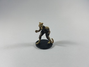 Tabaxi Female Rogue in White Natural Versatile Plastic
