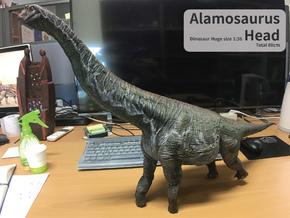 Alamosaurus Head (Total 80cm / 1:36) in White Natural Versatile Plastic