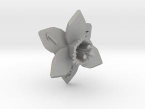 Daffodil D6 in Aluminum