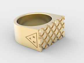 REPTILE1 PRINT in 18k Gold Plated Brass: 7 / 54