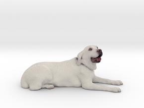 White Golden Retriever 001 in Full Color Sandstone