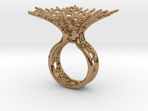 Hyphae Ring in Polished Brass: 5 / 49