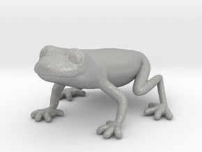 Red Eyed Tree Frog in Aluminum