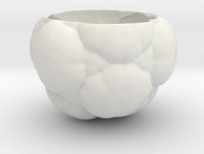 Fractal Flower Pot in White Natural Versatile Plastic