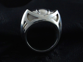 Mountain Lion Ring - Size 9 1/2 (19.35 mm) in Polished Silver