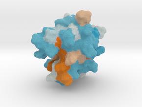 Decanoyl-ACP in Full Color Sandstone