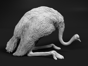 Ostrich 1:9 Guarding the Nest in White Natural Versatile Plastic