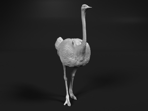 Ostrich 1:64 Standing Calm in Smooth Fine Detail Plastic
