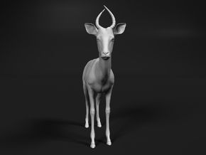 Impala 1:76 Male Juvenile in Smooth Fine Detail Plastic