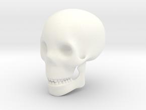 Skull in White Processed Versatile Plastic