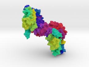 β-Glucuronidase in Full Color Sandstone