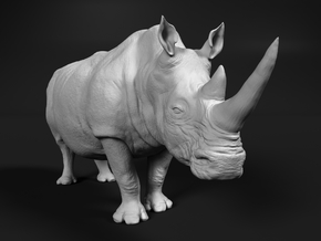 White Rhinoceros 1:32 Standing Male in White Natural Versatile Plastic