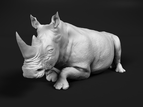 White Rhinoceros 1:22 Lying Female in White Natural Versatile Plastic