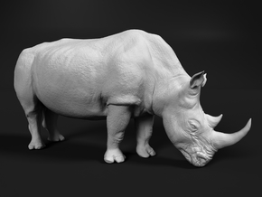 White Rhinoceros 1:87 Grazing Female in Smooth Fine Detail Plastic