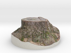 Tiny Tree Stump in Full Color Sandstone