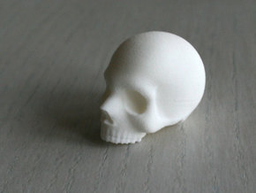 Skull Magnet  in White Natural Versatile Plastic