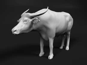 Domestic Asian Water Buffalo 1:12 Standing Male in White Natural Versatile Plastic