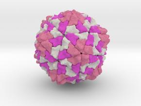 Rice Yellow Mottle Virus in Full Color Sandstone