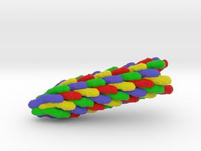 Bacteriophage F1 in Full Color Sandstone