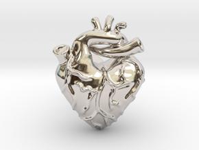 Anatomical Love Heart Cufflink SINGLE in Rhodium Plated Brass