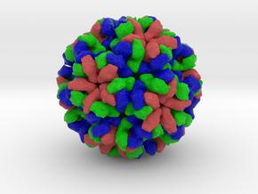 Orsay Virus in Full Color Sandstone