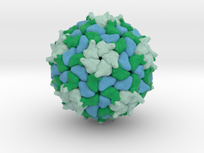 Triatoma Virus in Full Color Sandstone