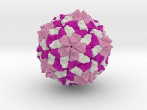 Southern Bean Mosaic Virus in Full Color Sandstone