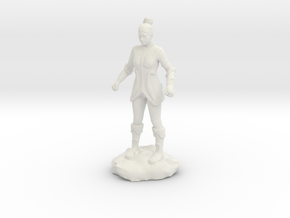 Female Human Fighter with Elven influenced armor. in White Natural Versatile Plastic