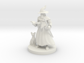 A Wizard and His Kitty in White Natural Versatile Plastic