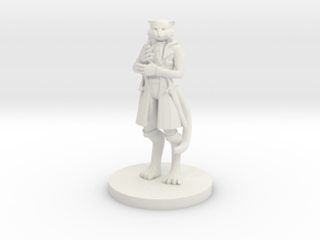 Sir Meowington IV in White Natural Versatile Plastic