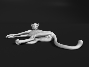Cheetah 1:6 Lying Male in White Natural Versatile Plastic