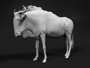 Blue Wildebeest 1:6 Standing Female in White Natural Versatile Plastic