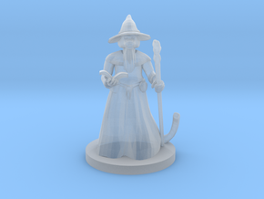 Catfolk Wizard in Smooth Fine Detail Plastic