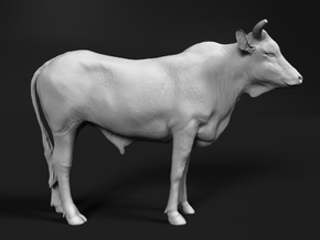 ABBI 1:24 Yearling Bull 1 in White Natural Versatile Plastic