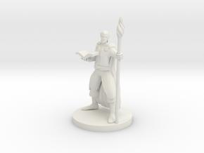 Elf Wizard V6 in White Natural Versatile Plastic