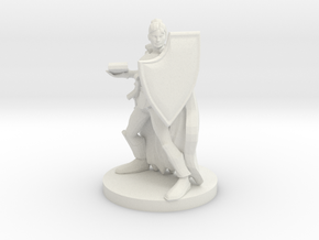 Female Eldritch Knight in White Natural Versatile Plastic