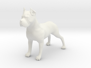 Dog in White Natural Versatile Plastic