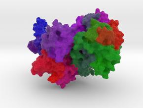 RNase II in Full Color Sandstone