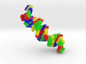 DNA in Full Color Sandstone