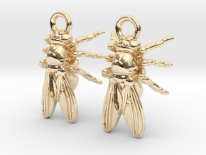 Drosophila Fruit Fly Earrings - Science Jewelry in 14K Yellow Gold